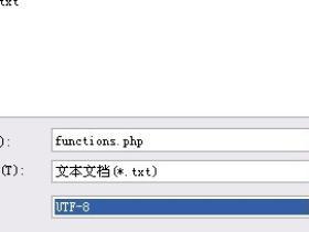 解决wordpress查看源代码中文乱码的方法