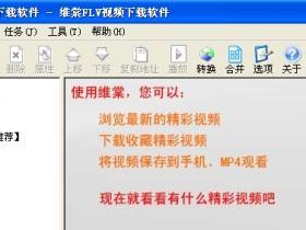 维棠FLV视频下载软件 1.1.6.7